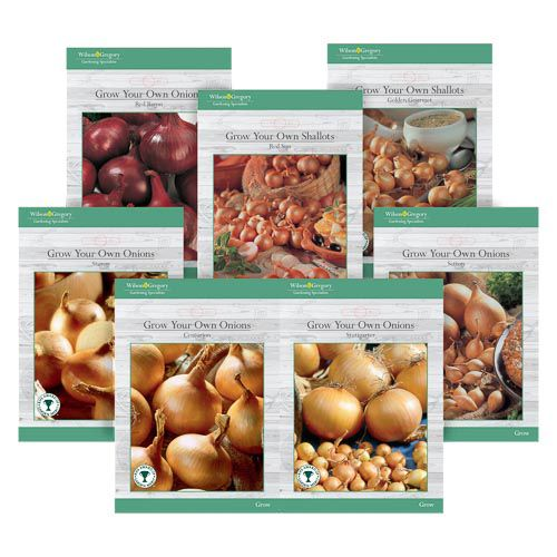ASSORTED ONIONS AND SHALLOT BULBS