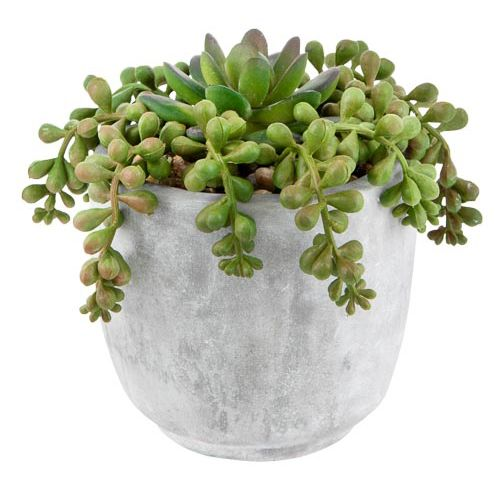 Artificial Trailing Plant In Ceramic Pot