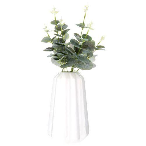 Eucalyptus In Vase